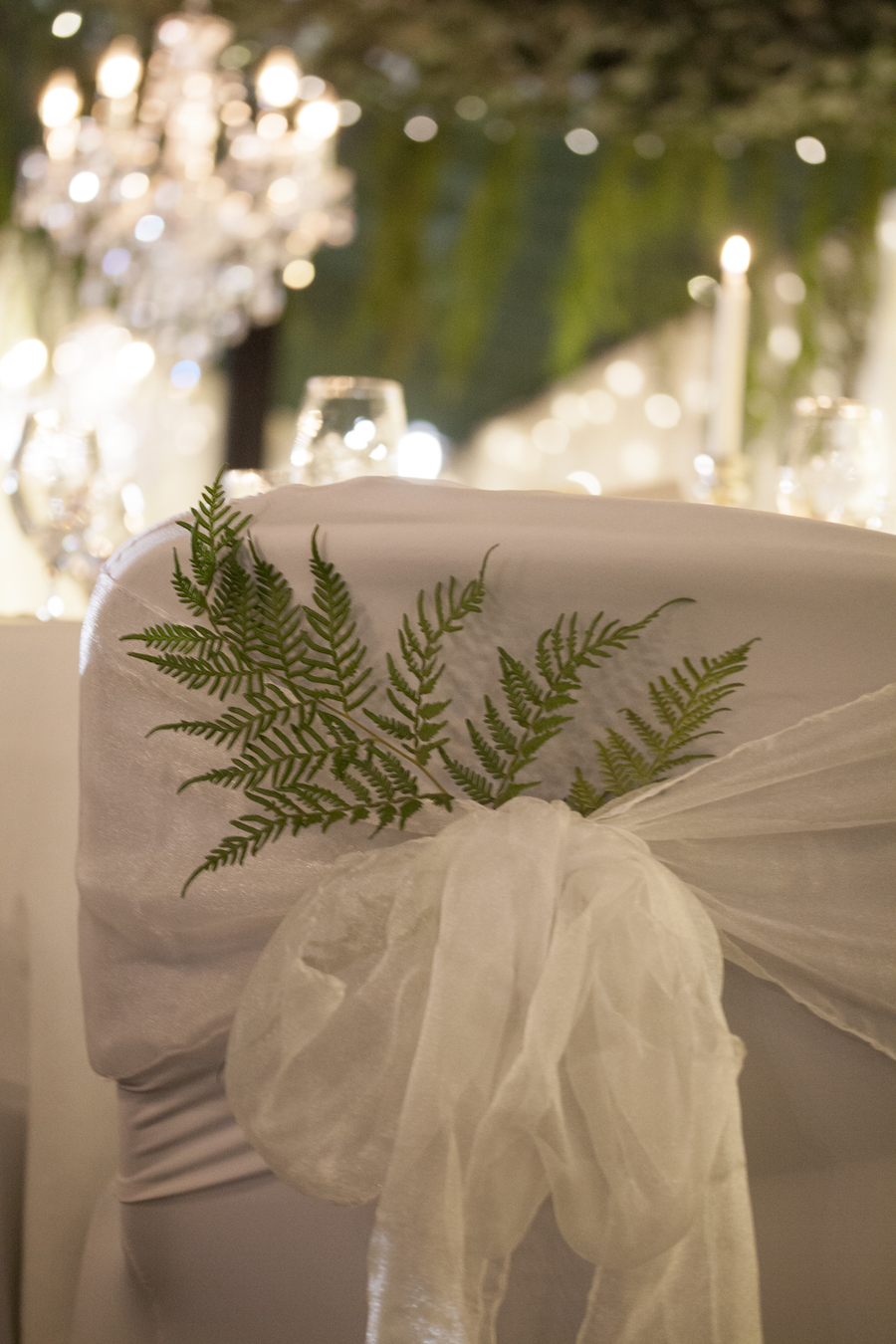 Style my day - Wedding reception - Indoor rainforest - Romantic Lighting
